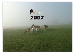 MyZoo Calendar 2007