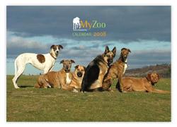 MyZoo Calendar 2008