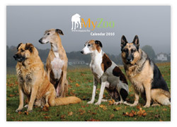 MyZoo Calendar 2010