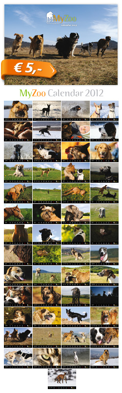 MyZoo Calendar 2012