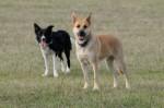 Maya and Ronja
