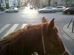 Krisztina boulevard